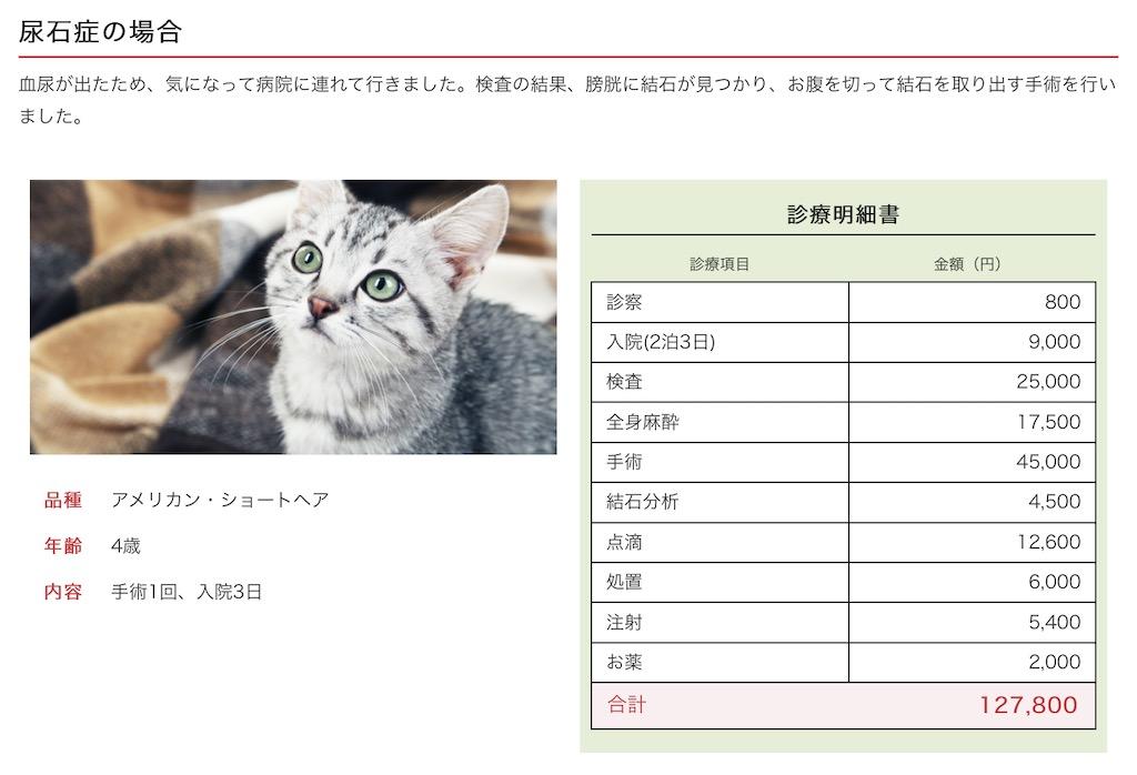猫の治療費