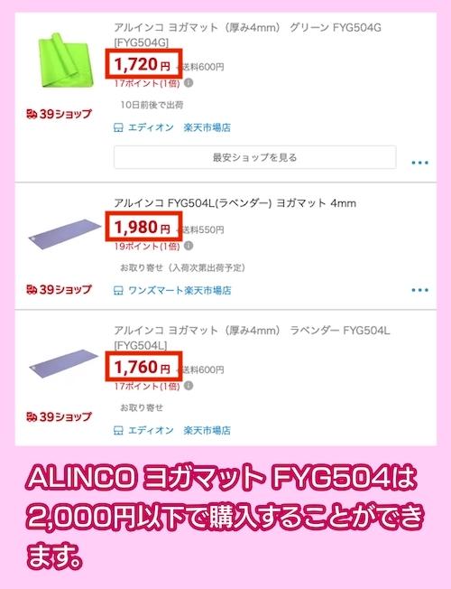 ALINCO ヨガマット FYG504